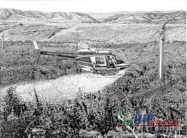 Bell 206 Helicopter Pen and Ink Drawing